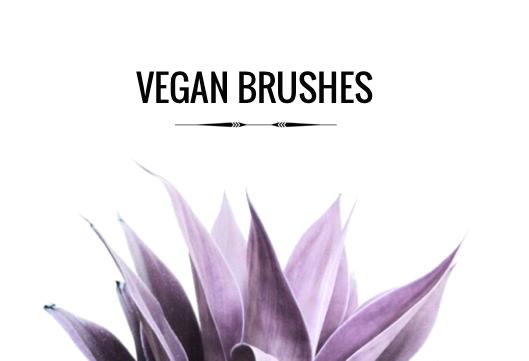 Pinceaux Vegan